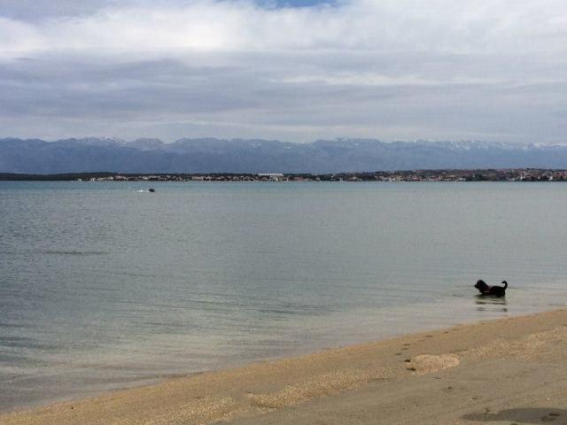 Blick aufs Meer. Na, Lust auf Urlaub?